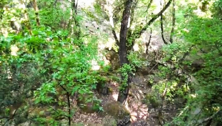 Dolina Motyli