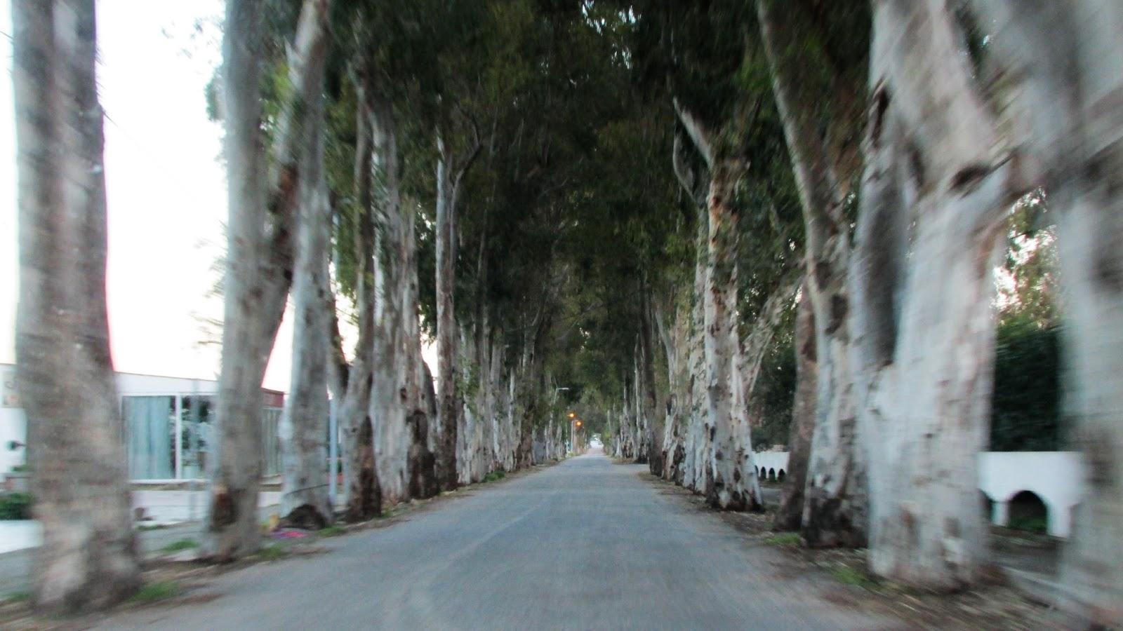 włoskie wioski kolymbia