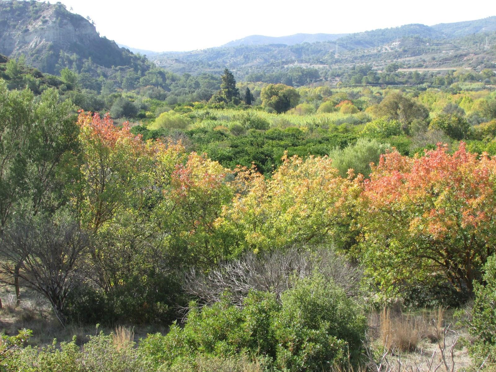 dolina Aithonas